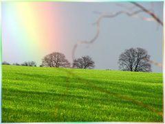 Regenbogen über Birkholz