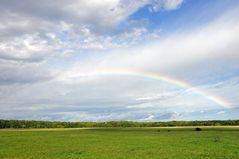 Regenbogen über dem Hainich (TH)