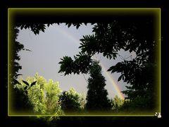 * Regenbogen über Dortmund *