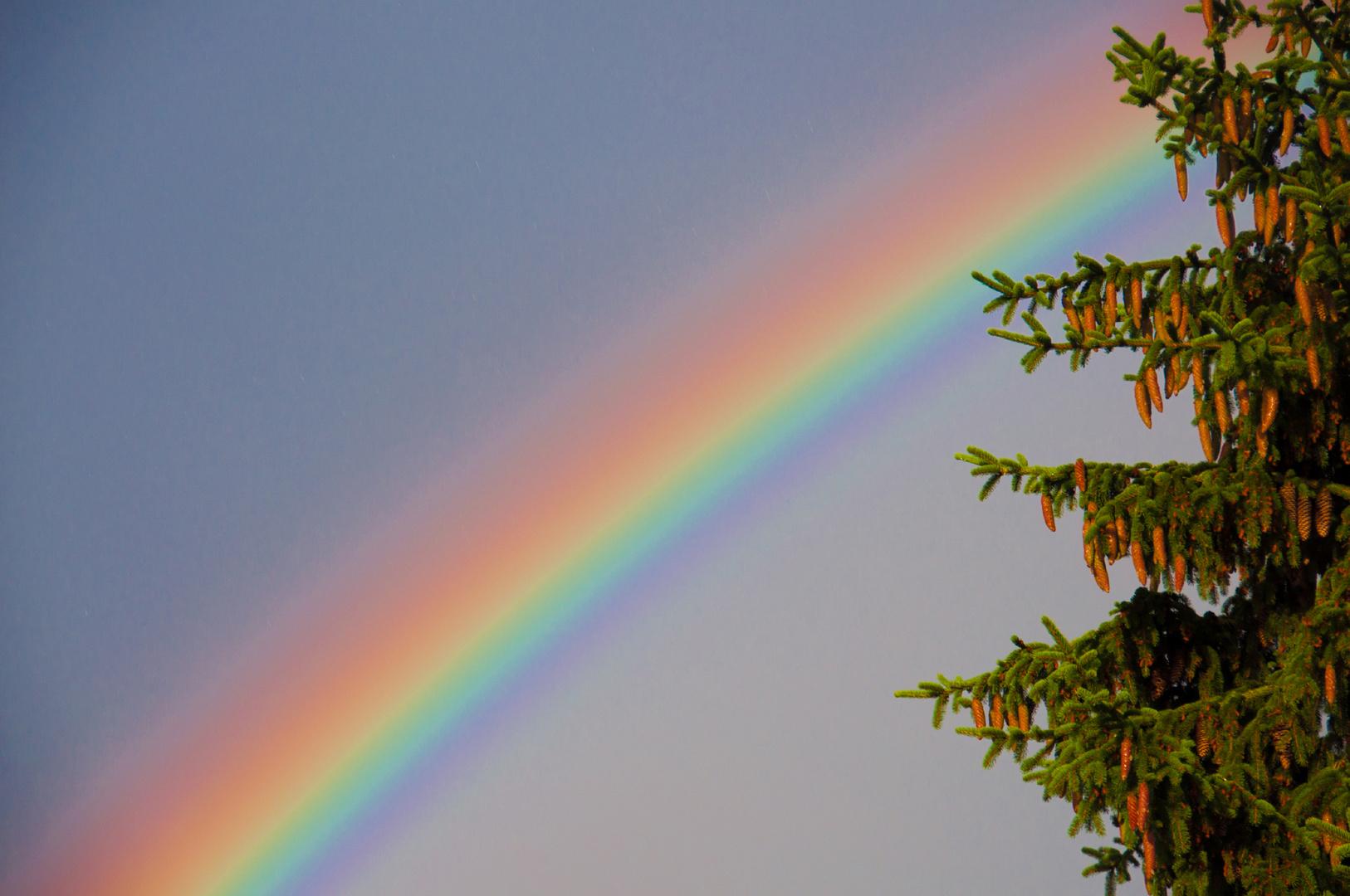 regenbogenfarben foto bild opt ph nomene der atmosph re himmel universum regenbogen. Black Bedroom Furniture Sets. Home Design Ideas