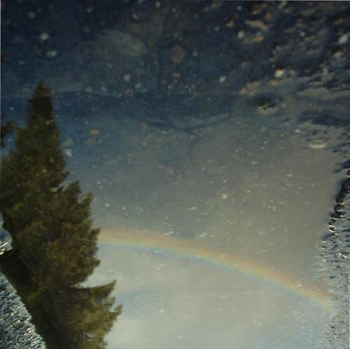 RegenbogenSpiegelung