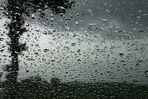 Regenmai