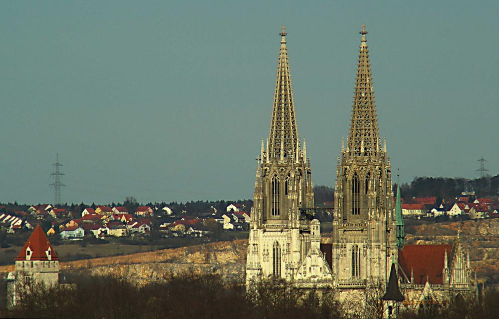 Regensburger Dom vom Drei-Bäumerl-Berg