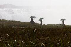Regenschirme bei den Victoria Falls