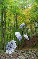 Regenschirme im Wald