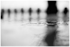 Regen(Spiegel)  --  Tage