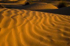 Regentropfen im Wüstensand