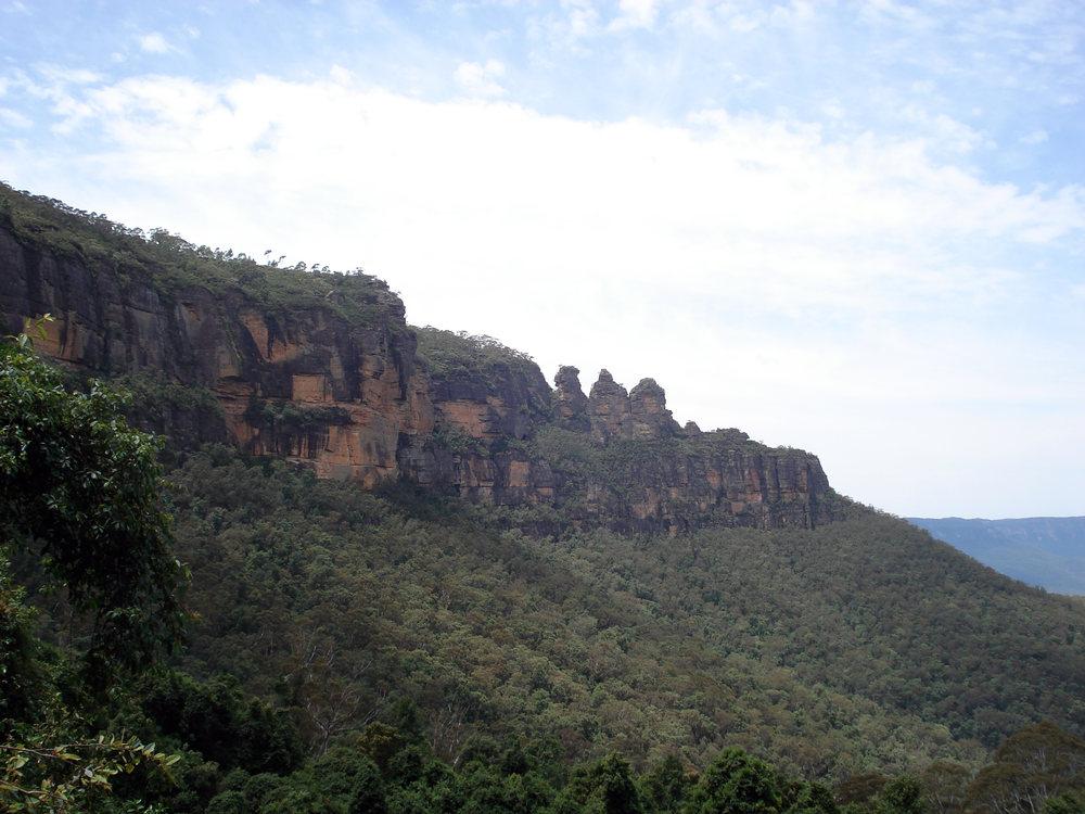 Regenwald in den Blue Mountains ?!