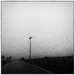 °regen°wetter°
