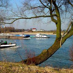 Reger Schiffsverkehr auf dem Rhein