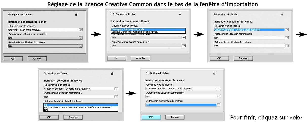 Réglage de la licence Creative Commons pour l'Atelier Retouche