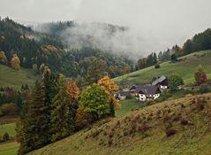 Regnerische Herbststimmung auf dem Plesch!