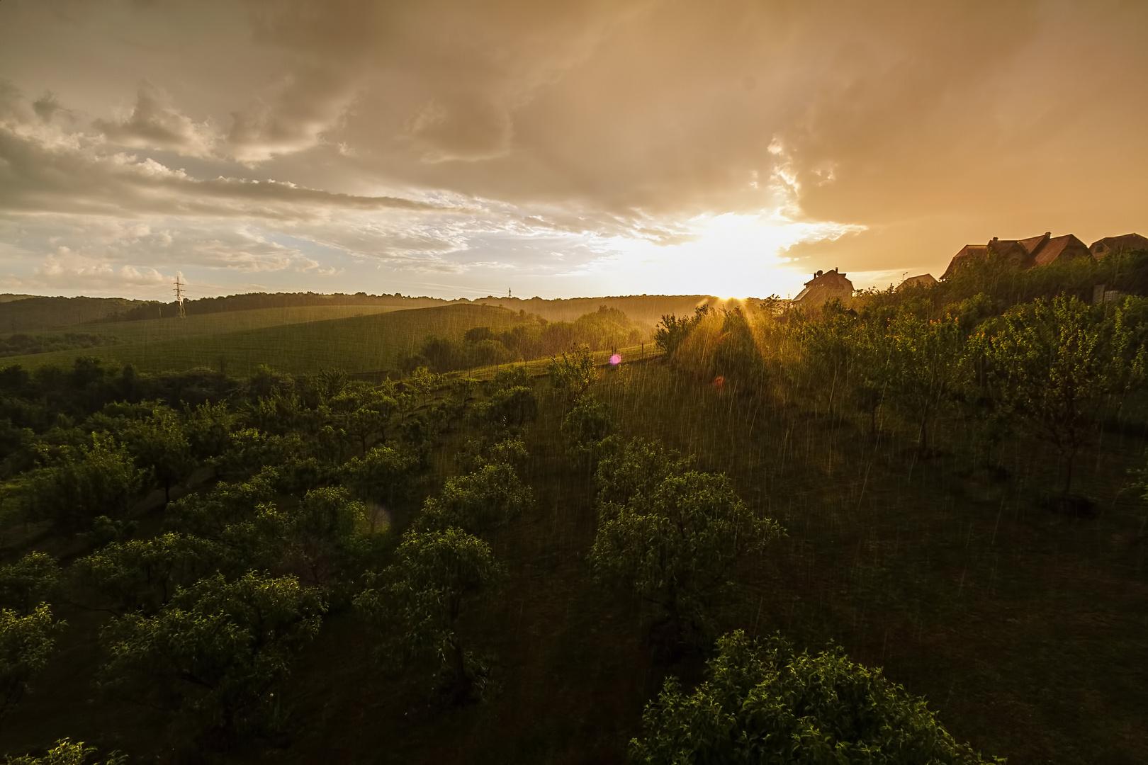 regnerischer Abend