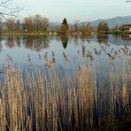 Reichenburg = Der Teich / L'etang / El estanque...04