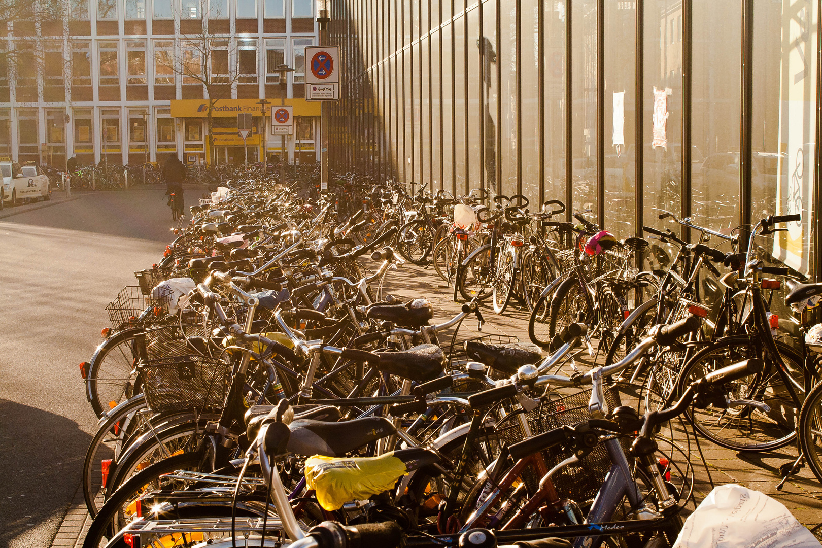 Reichlich Fahrräder in Münster
