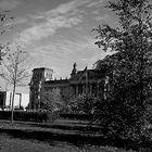 Reichstag hinter den Büschen
