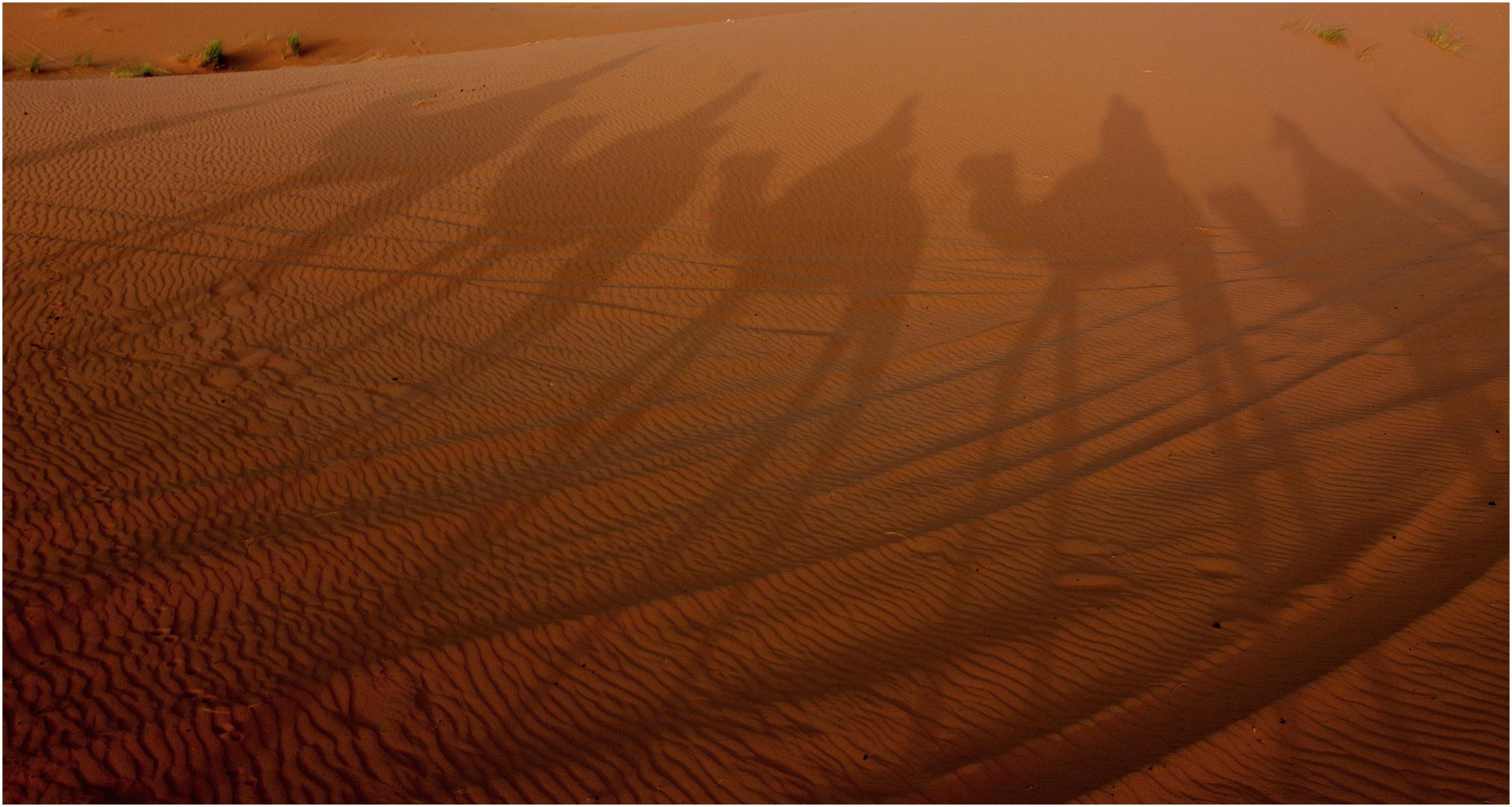 Reifenspuren im Sand ...