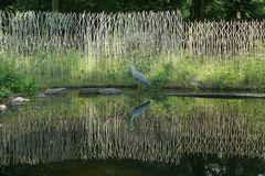 Reiher im ZOOM Erlebnispark, Gelsenkirchen