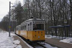 Reinhardsbrunner Teiche, Tw 56, März 2013