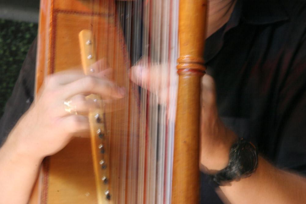 Reinheimer Musiktage 2007