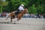 Reining Cup -2-