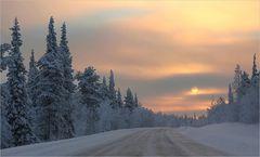 Reise in das kalte Licht