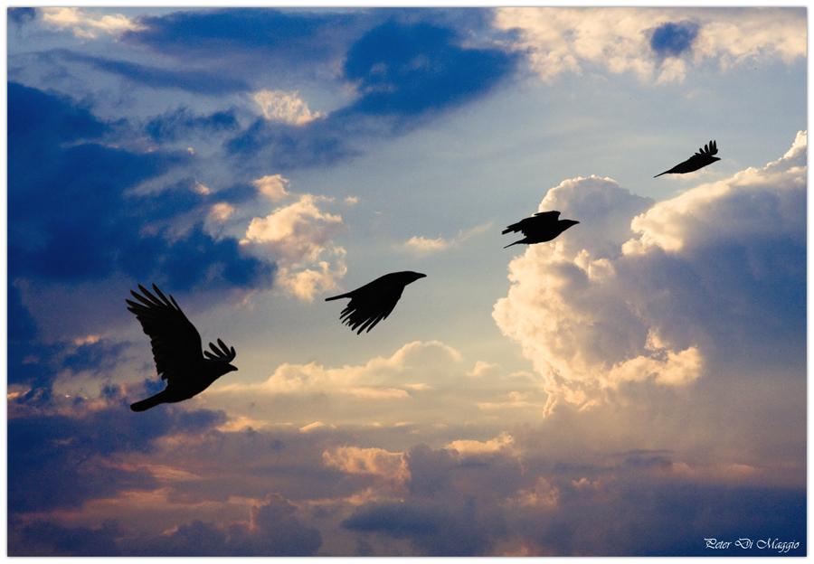 Reise zum Himmel