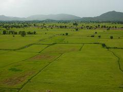 Reisfelder bei Kanchanaburi
