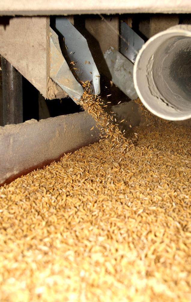 Reismühle