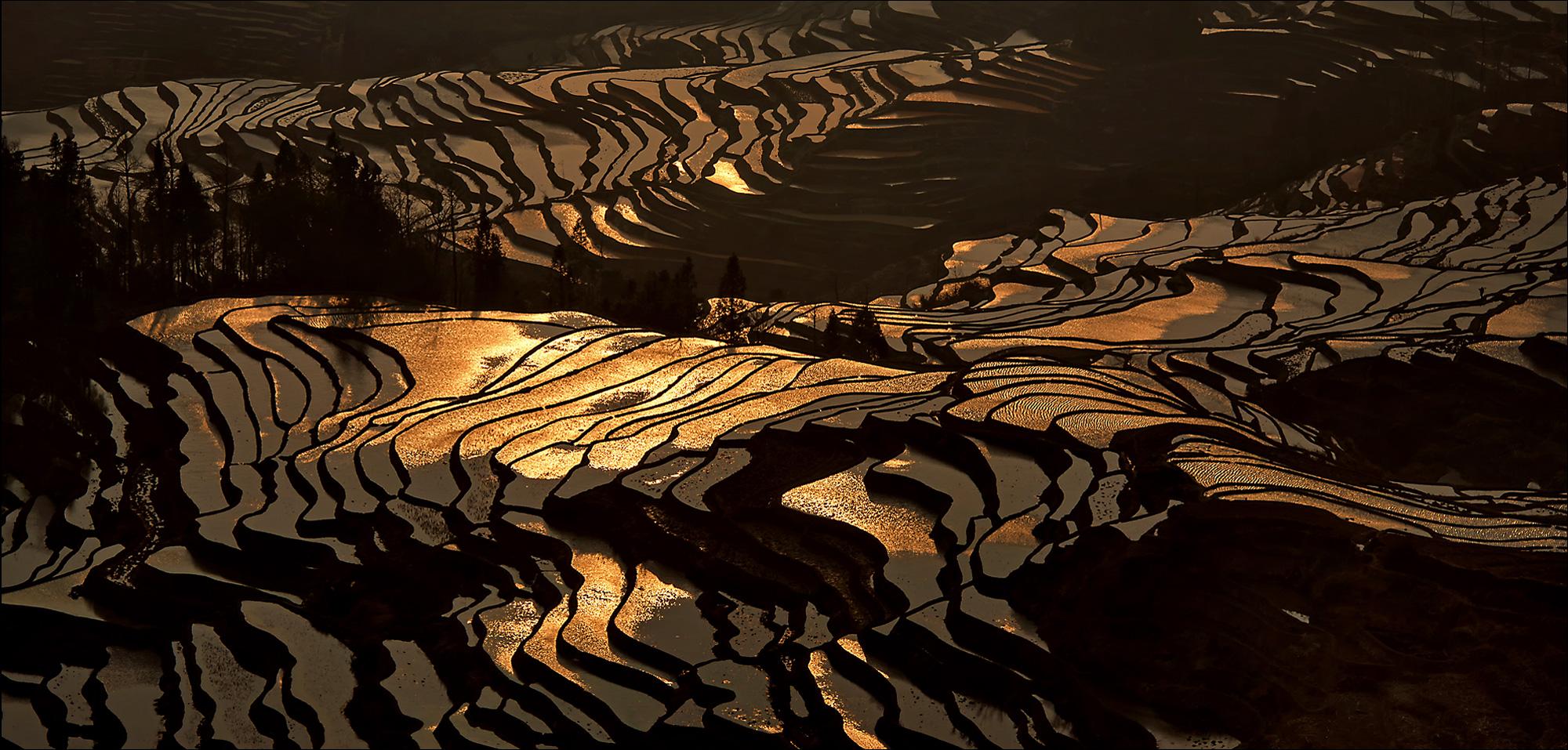 Reisterrassen in Yuanyang