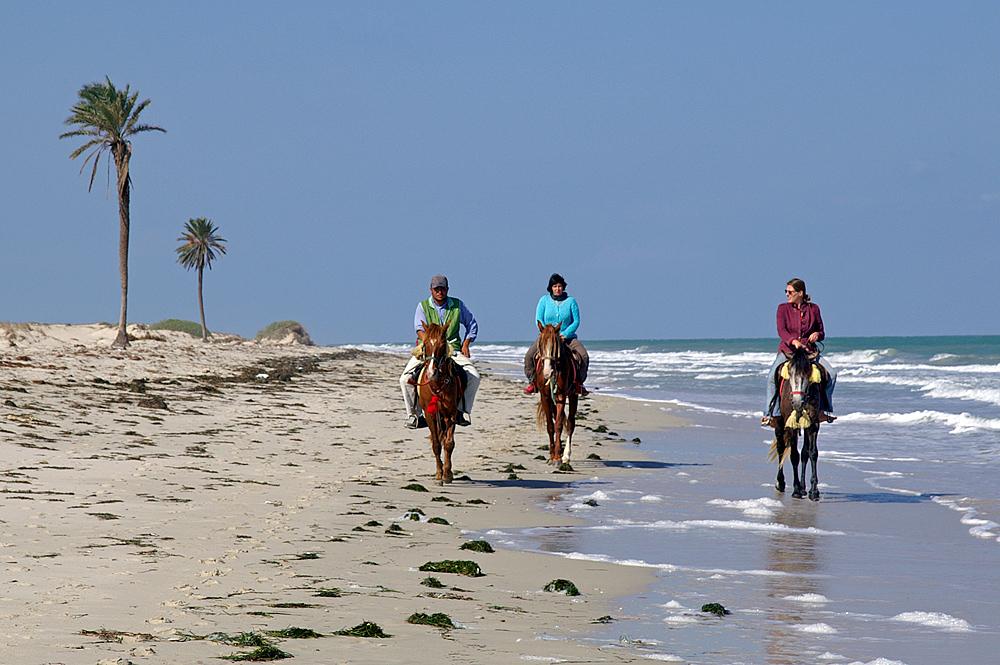 Reiten in Sidi Mahres