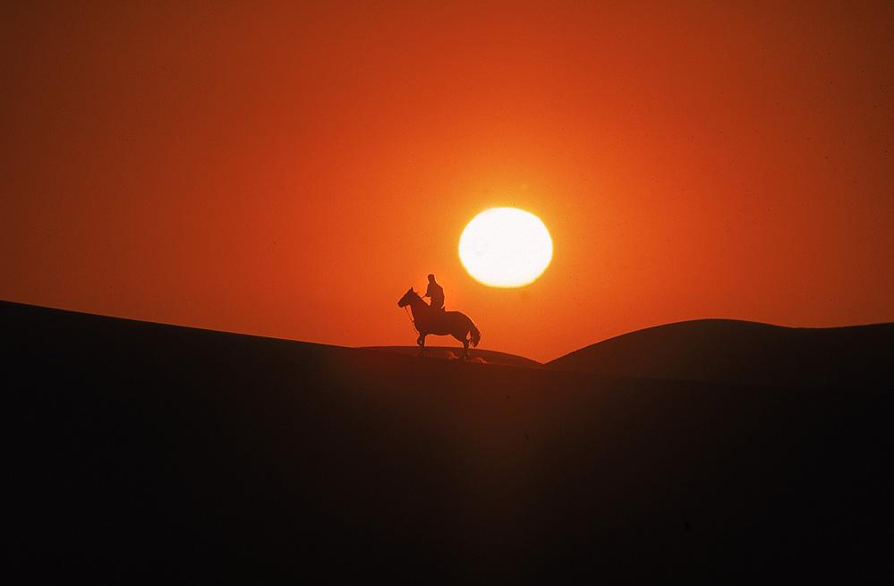Reiter in den Dünen