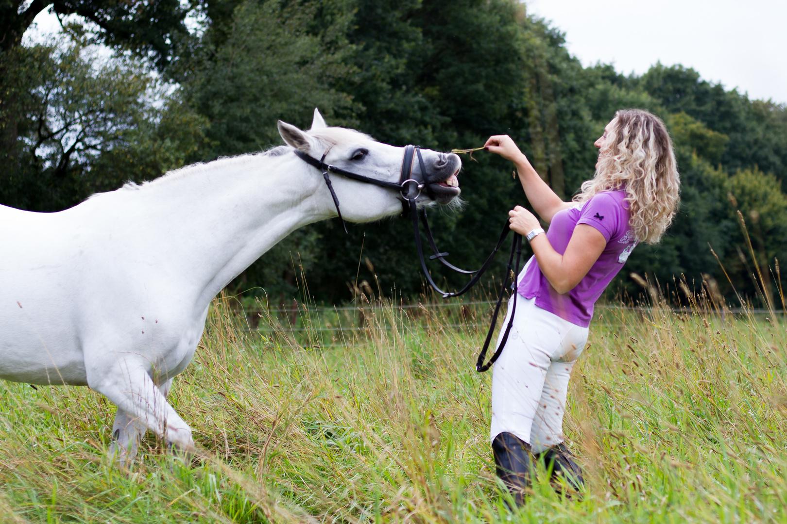 reiterin mit pferd foto  bild  fotos natur pferde