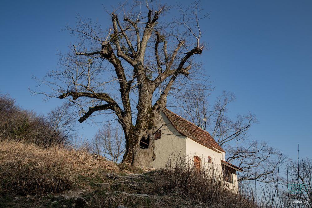 Reiterleskapelle bei Tannweiler