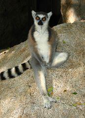 Relax in Madagaskar