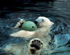 Relax mit Ball