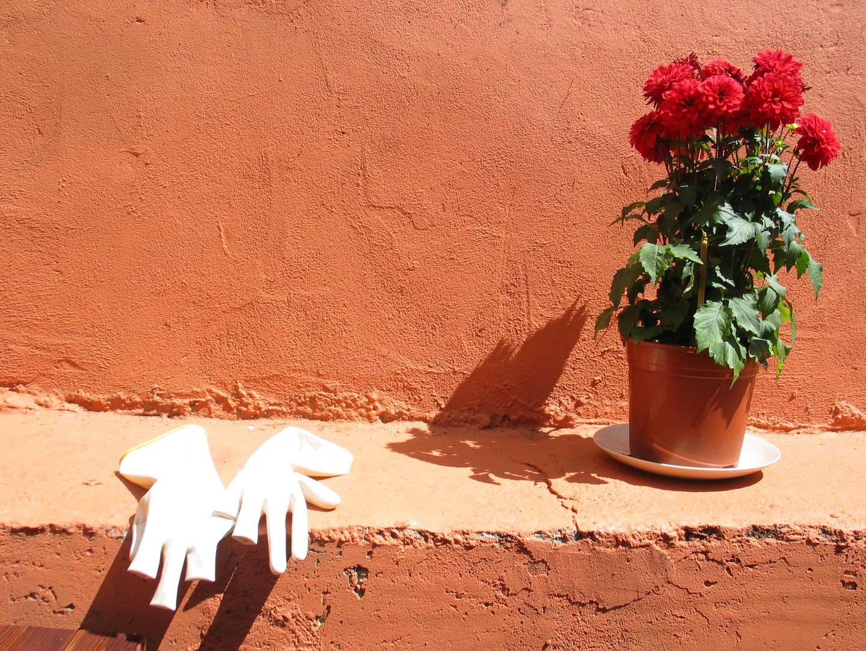 relax my glove