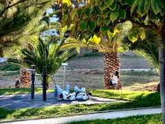 ..Relax  nel  giardino..chi non lavora si stanca.