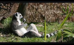 ... Relaxen ...