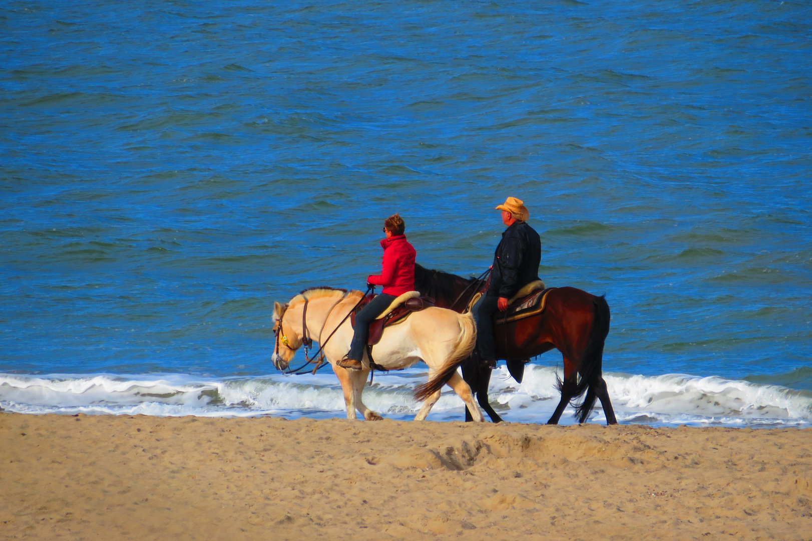 Relaxing riders and horses at the beach