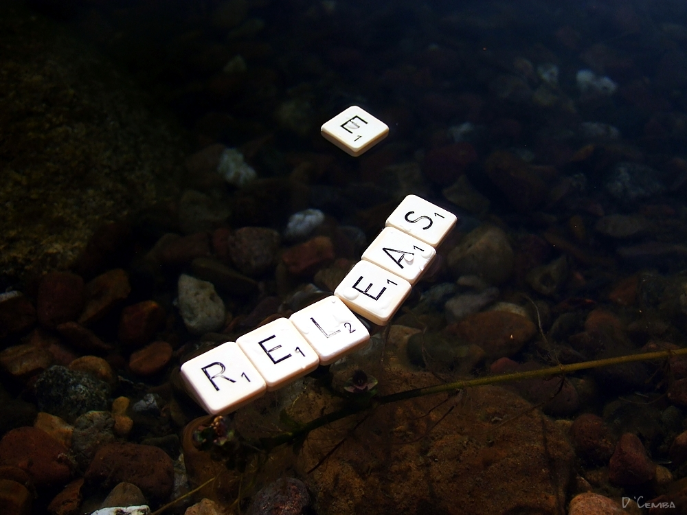 ~ release ~