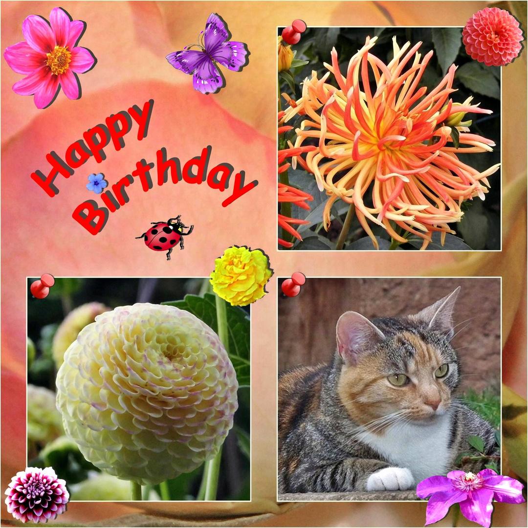 Renate hat Geburtstag