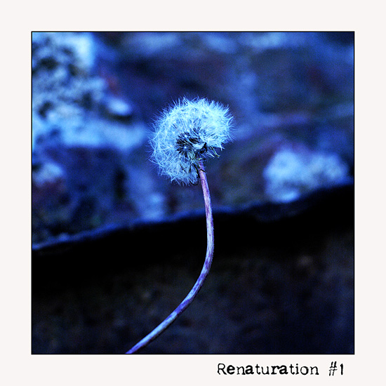Renaturation #1