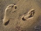 Rencontre en absence.... grand pas; petit pas...