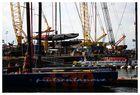 Rennboote im Hafen - Americas Cup