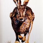 rennender Hase