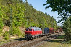 Rennsteigbahn- Leerholzzug