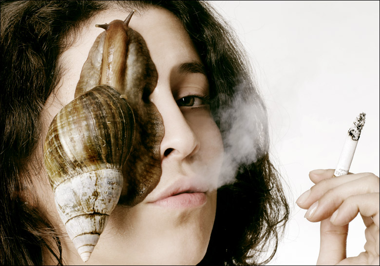 rent--a--snail