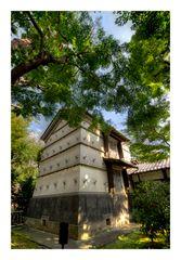 Residence of Asakura 22