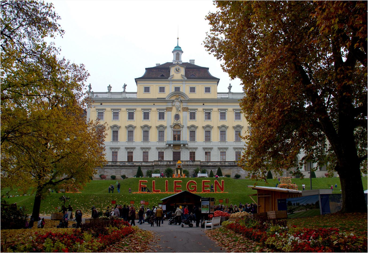 residenzschloss ludwigsburg (5)